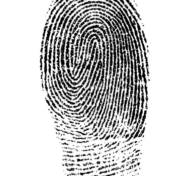 WORK AUTHORIZATION WITH OLD FINGERPRINTS